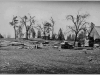 """Lumber mill photo with """"10 Upper Buck Ridge Saw Mill about"""