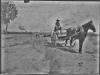 """photo of man riding buckboard. Back has written """"Bill"""