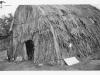 "print of tule hut back says ""1950 Lake County Fair, Looking"