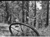 Negative of photo of man near steel drive wheel in woods.